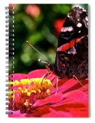 Wing Profile Spiral Notebook
