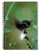 Wings In Motion Spiral Notebook
