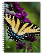 Wings Of Hope Spiral Notebook