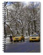 Winter - 2011 Spiral Notebook