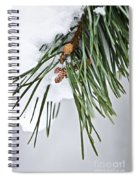 Winter Branches Spiral Notebook
