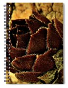 Winter Chick Spiral Notebook