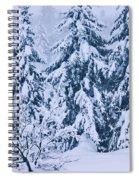 Winter Coat Spiral Notebook