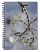 Winter Crystals Spiral Notebook