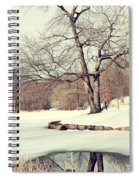 Winter Day In The Park Spiral Notebook