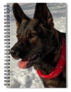 Winter Dog Spiral Notebook