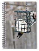 Winter Feeding Spiral Notebook