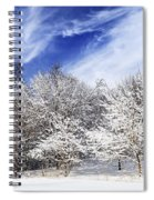 Winter Forest Covered With Snow Spiral Notebook