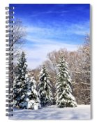 Winter Forest With Snow Spiral Notebook