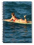 Winter In Hawaii 6 Spiral Notebook