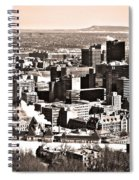 Winter In The City ... Spiral Notebook