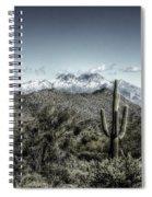 Winter In The Desert Spiral Notebook