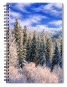 Winter In The Rockies Spiral Notebook