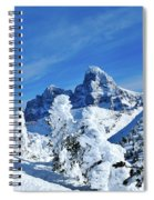 Winter In The Tetons Spiral Notebook