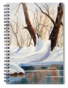 Winter In The Valley Spiral Notebook