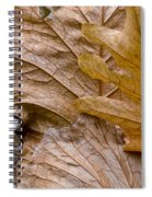 Autumn Leaves Of Gold Spiral Notebook