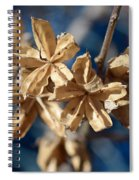 Winter Remainder Spiral Notebook