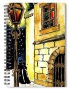 Winter Romance Spiral Notebook