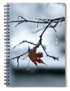 Winter Solo Spiral Notebook