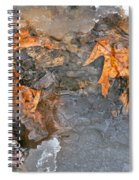 Winter Stream Spiral Notebook