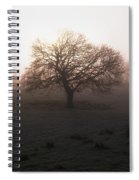 Winter Tree On A Frosty Morning, County Spiral Notebook