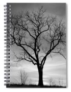 Winter Tree Silhouette Spiral Notebook