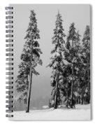 Winter Trees On Mount Washington - Bw Spiral Notebook