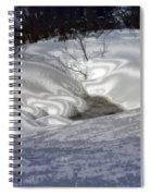 Winter's Satin Blanket Spiral Notebook