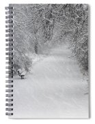 Winter's Trail Spiral Notebook