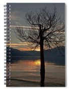 Wintertree In The Evening Spiral Notebook