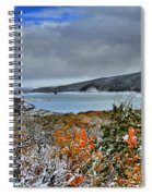 Wintry Dusting Spiral Notebook