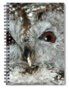 Wise Owl Spiral Notebook