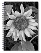 Wistful One Monochrome Spiral Notebook