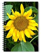 Wistful One Spiral Notebook