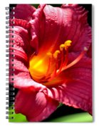 With The Finger Of God Spiral Notebook