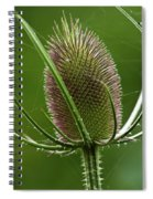 Without Petals Spiral Notebook