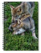 Wolf Play Spiral Notebook
