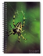 Wolf Spider  Spiral Notebook