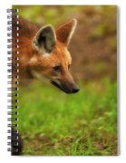 Wolf Strut Spiral Notebook