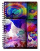 Wondering 1 Spiral Notebook