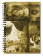 Wondering 3 Spiral Notebook