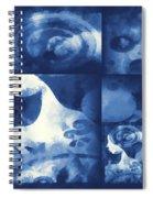 Wondering 4 Spiral Notebook