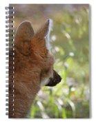 Wondering Wolf Spiral Notebook