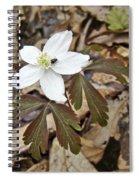 Wood Anemone - Anemone Quinquefolia Spiral Notebook