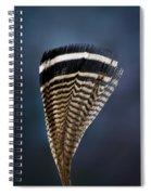 Wood Duck Feather Spiral Notebook