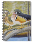 Wood Duck Pair At The Lake Spiral Notebook