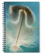 Wood Duck Part Spiral Notebook