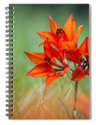 Wood Lily Spiral Notebook