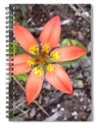 Wood Lily Lilium Philadelphicum Spiral Notebook