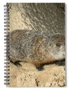 Woodchuck Spiral Notebook